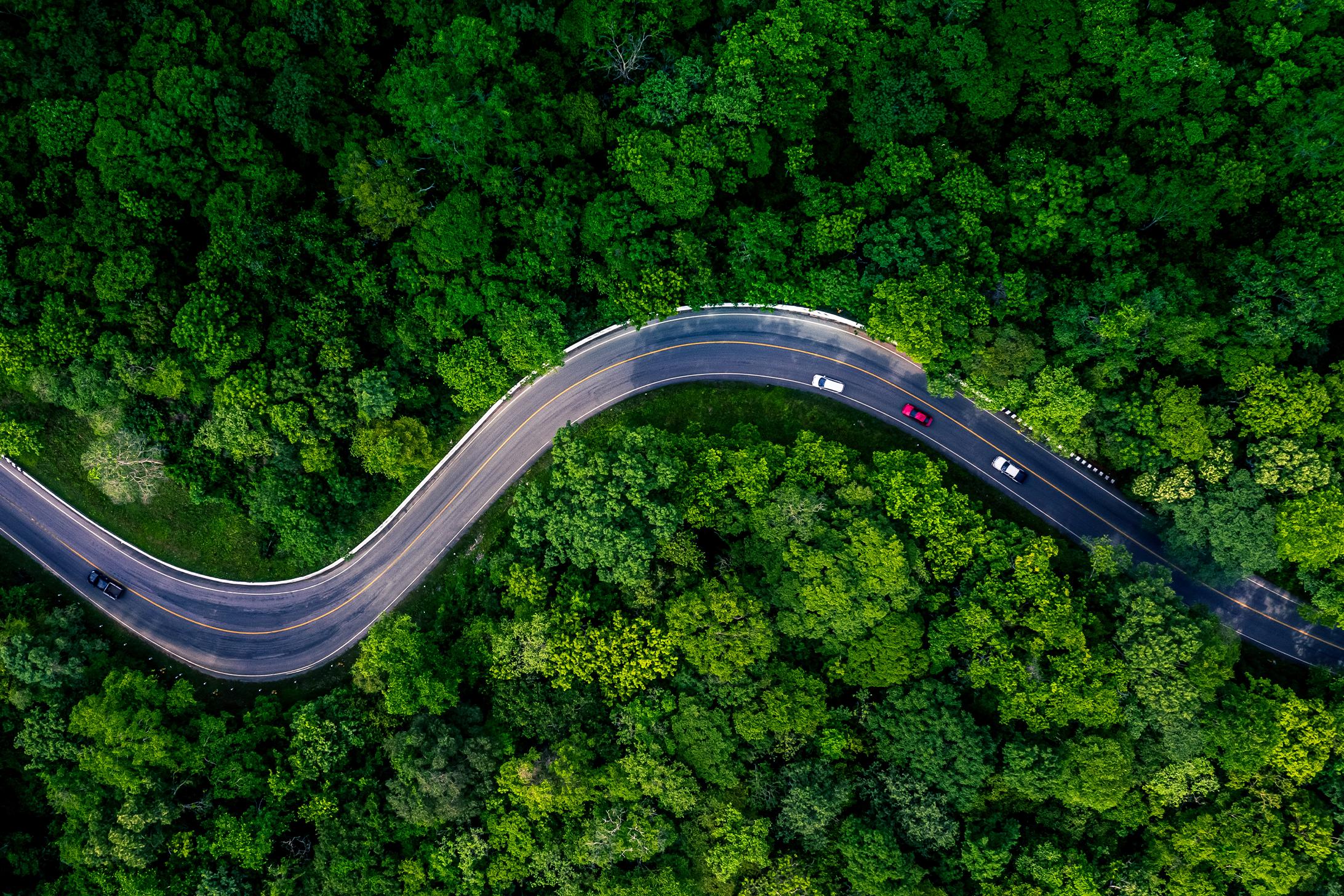 Bridge-Partners-Sustainability-Case-study-1